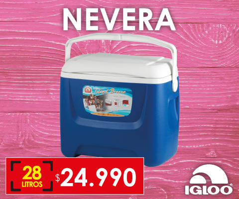 Nevera Igloo